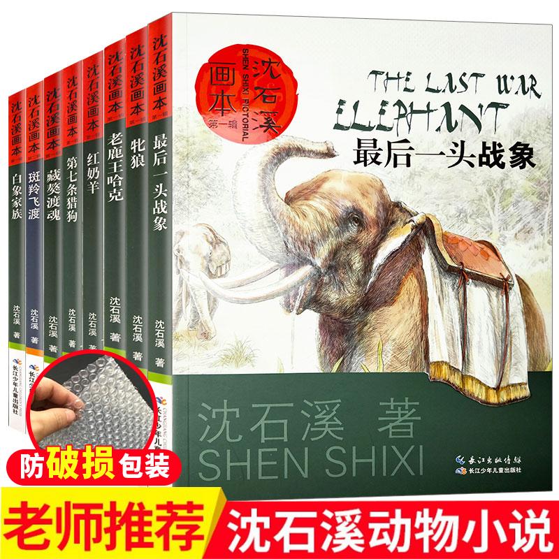【沈石溪】 全套8册沈石溪动物小说全集  儿童文学正版经典